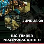 Generic Event Poster 2019_BigTimber.png