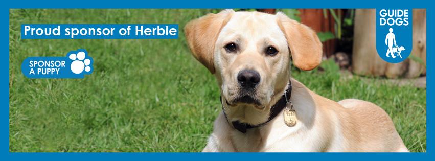 facebook-Herbie.jpg