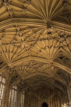divinity-school-bodleian-library-oxford-