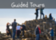 Guided Tours_edited.png