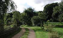 chemin jardin