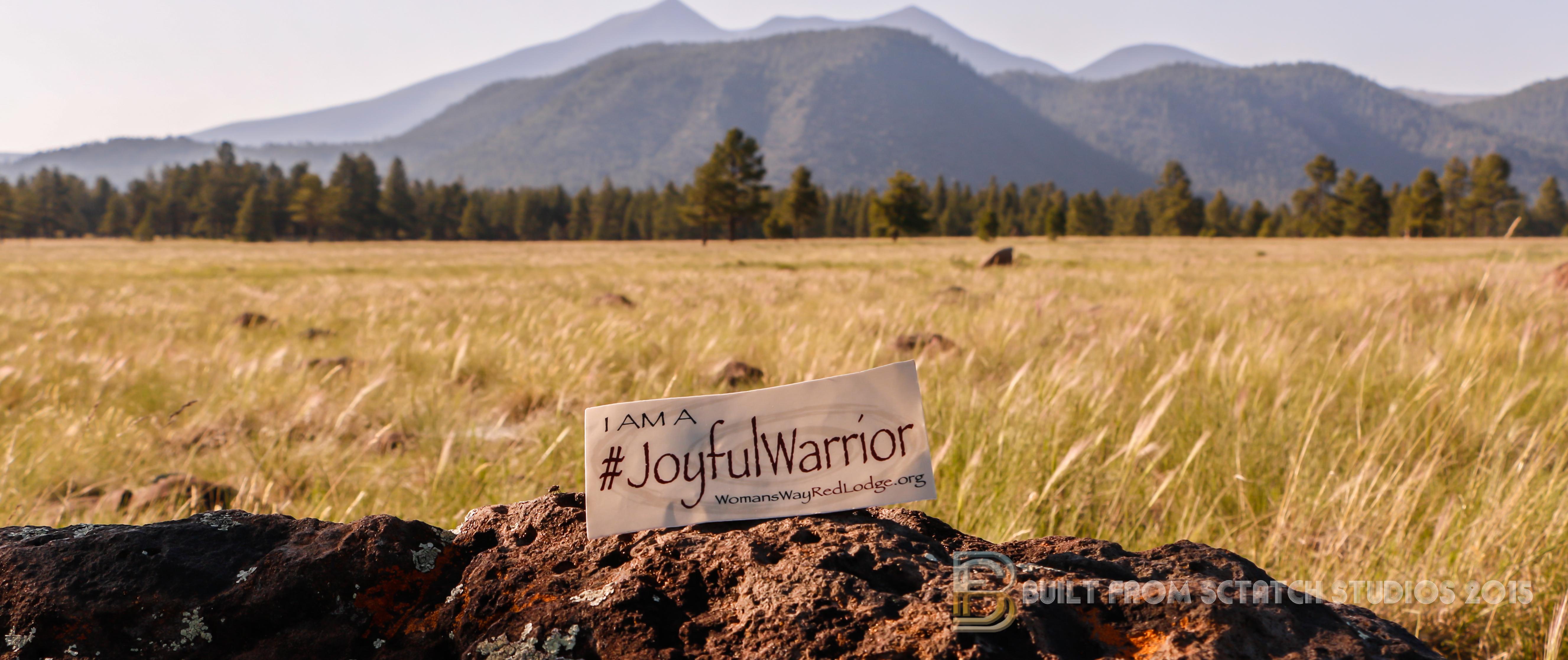 WWRL Joyful Warriors