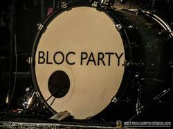 Built From Scratch Studios- Dum Dum girls & Bloc Party--12.jpg