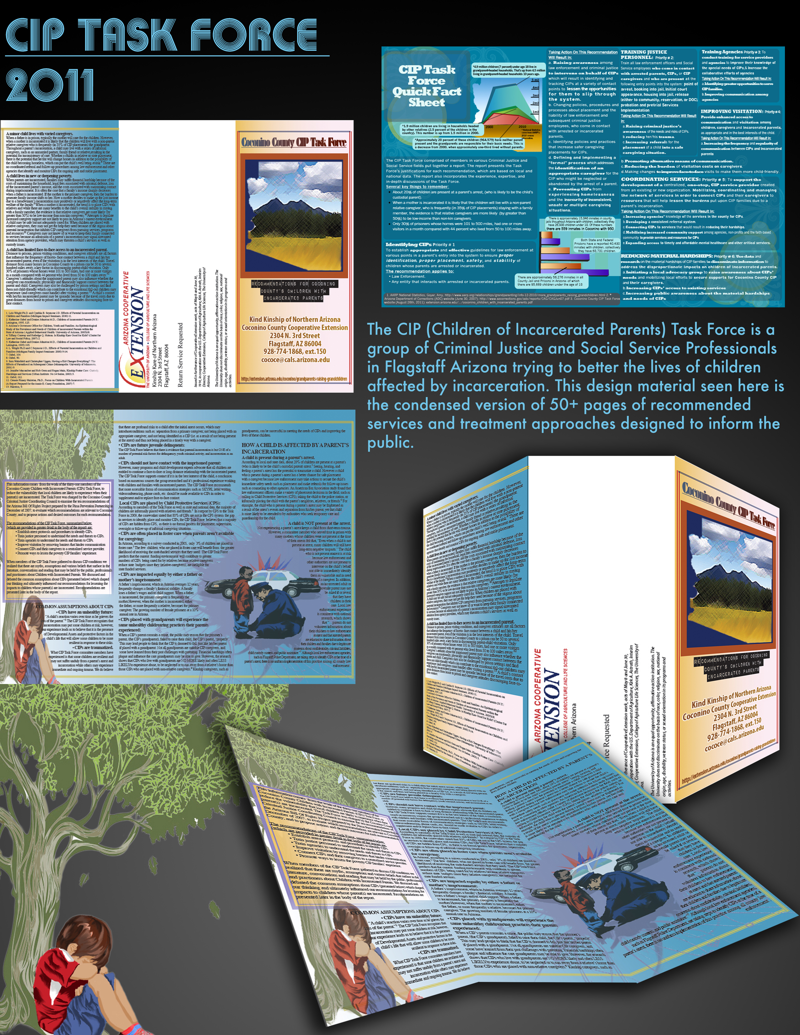 CIP Promotional Demo.jpg