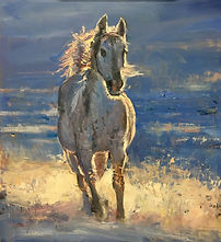 Forza Cavallo Original Equestrian Paintings
