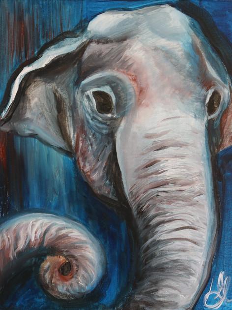 Elephant #1