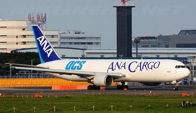 samolot cargo do transportu