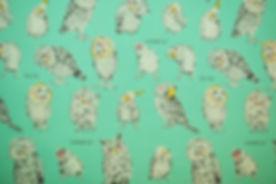 Lucky Cat 032.JPG