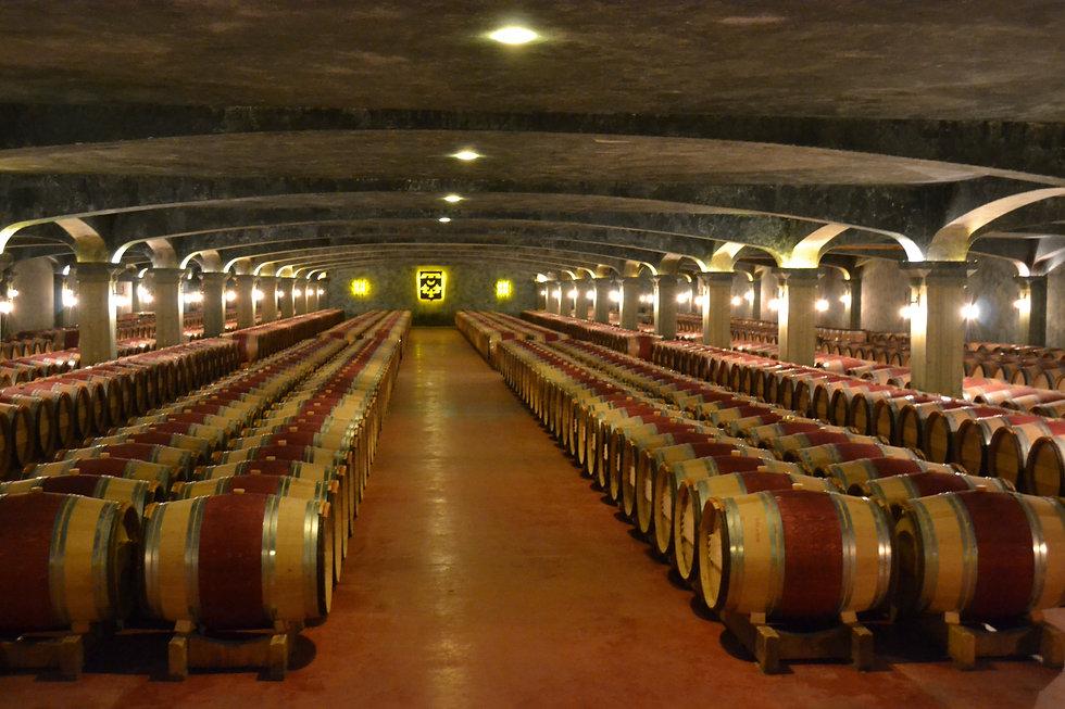 SMH cellars.jpg