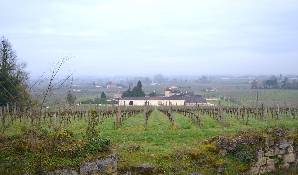 Header-Bordeaux%2520in%2520the%2520morni