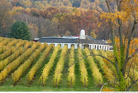barboursville-winery.jpg