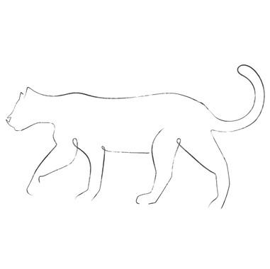 Leopard Line Art