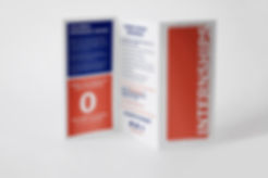 Internship Brochure_Side One.jpg