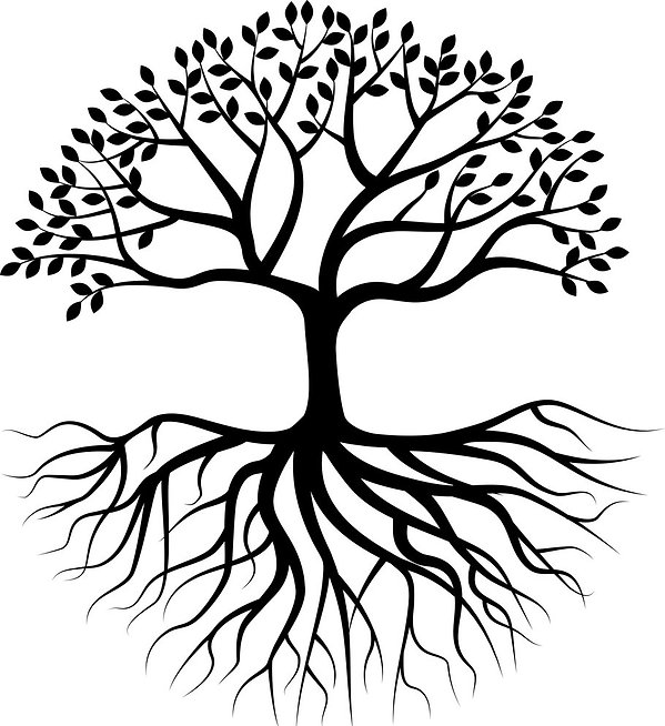 tree-silhouette-with-root-vector-20767865_edited.jpg