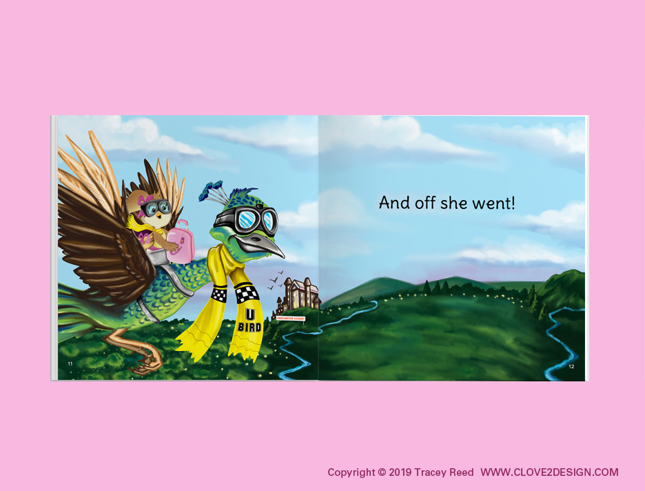 Chickens can't Fly with Eagles (children's book)