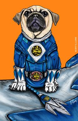 Blue Ranger (Pug)