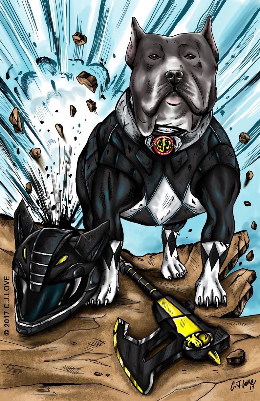 Black Ranger (Pit Bull)