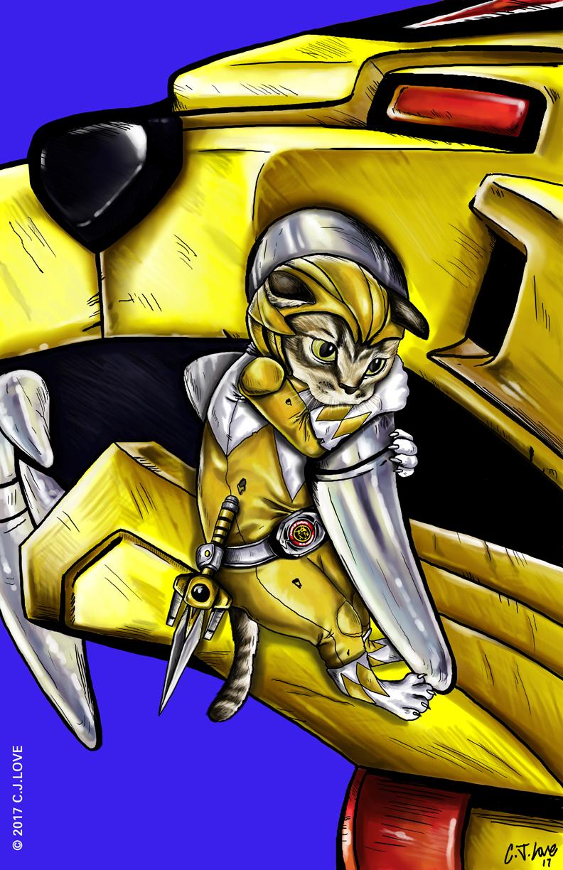 Ranger kitten