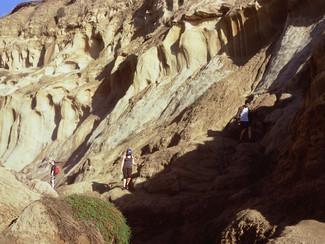 Blacks trail SD