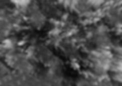 Final scan 1 darker.jpg