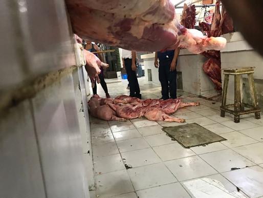 Insalubre Manejo de Carne en el Mercado Lázaro Cárdenas en Chetumal
