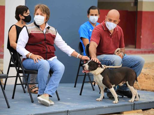 Gobierno de Solidaridad Fomenta el Cuidado Responsable de las Mascotas