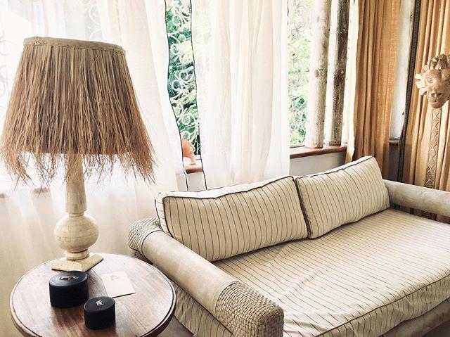 Club Lumière #palmshade in a jungle home
