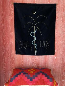 thepalmist_banner_sultan