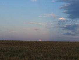 Montedoro sunset
