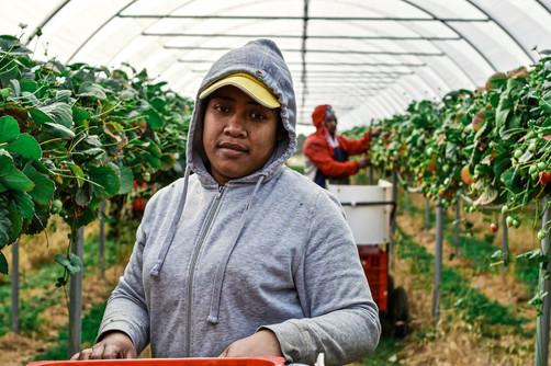 Meleseini Tukuafu—Tonga, Tasmania, Australia, 2018.