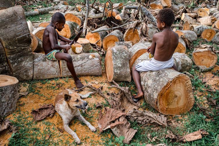 Calzé & Webson, Hog Harbour, Vanuatu, 2019.