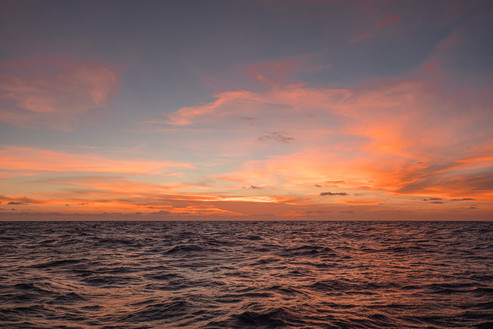 Sunset, Coral Sea, 2019.