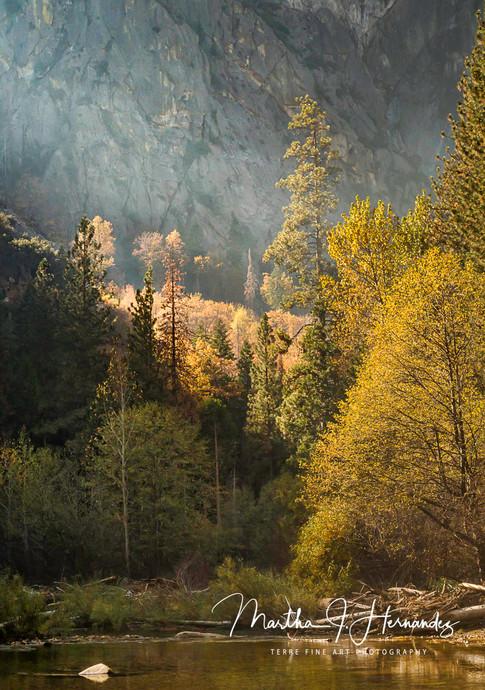 Morning Serenity Kings Canyon