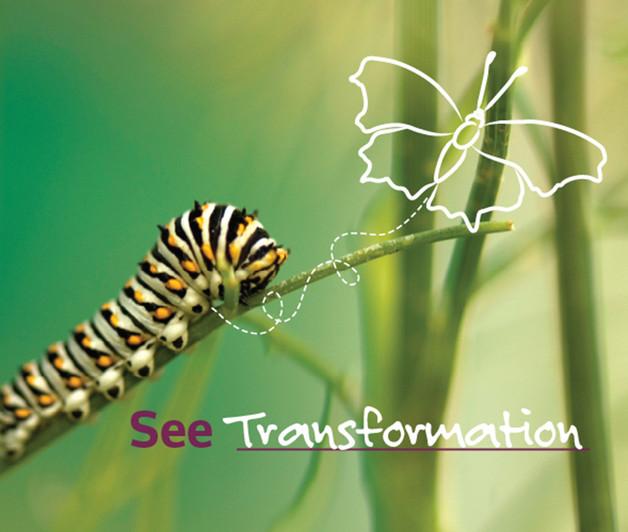 SeeTransformation.jpg
