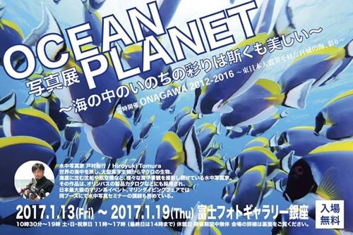 写真展OCEAN PLANET ~海の中のいのちの彩りは斯くも美しい~ 開催のお知らせ