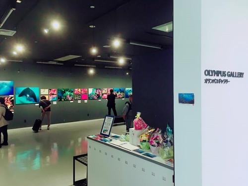 戸村裕行写真展 OCEAN PLANET ~いのち煌めく海の中の時間〜 終了。