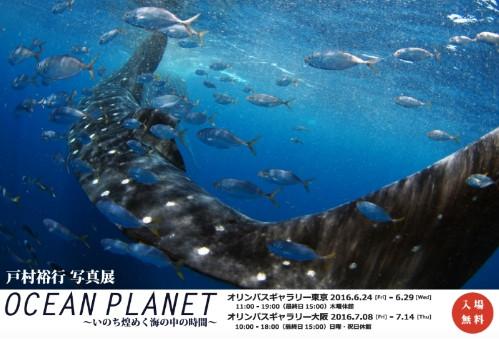 戸村裕行写真展 OCEAN PLANET ~いのち煌めく海の中の時間〜 開催のお知らせ