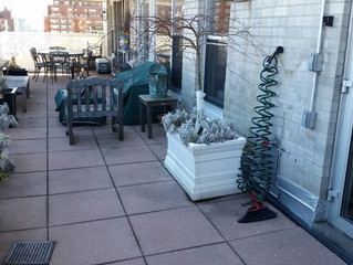 Spacious Classic 5 with Private 500sq.ft terrace - Doorman - Pets Ok!