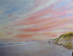 South Beach Surfcaster