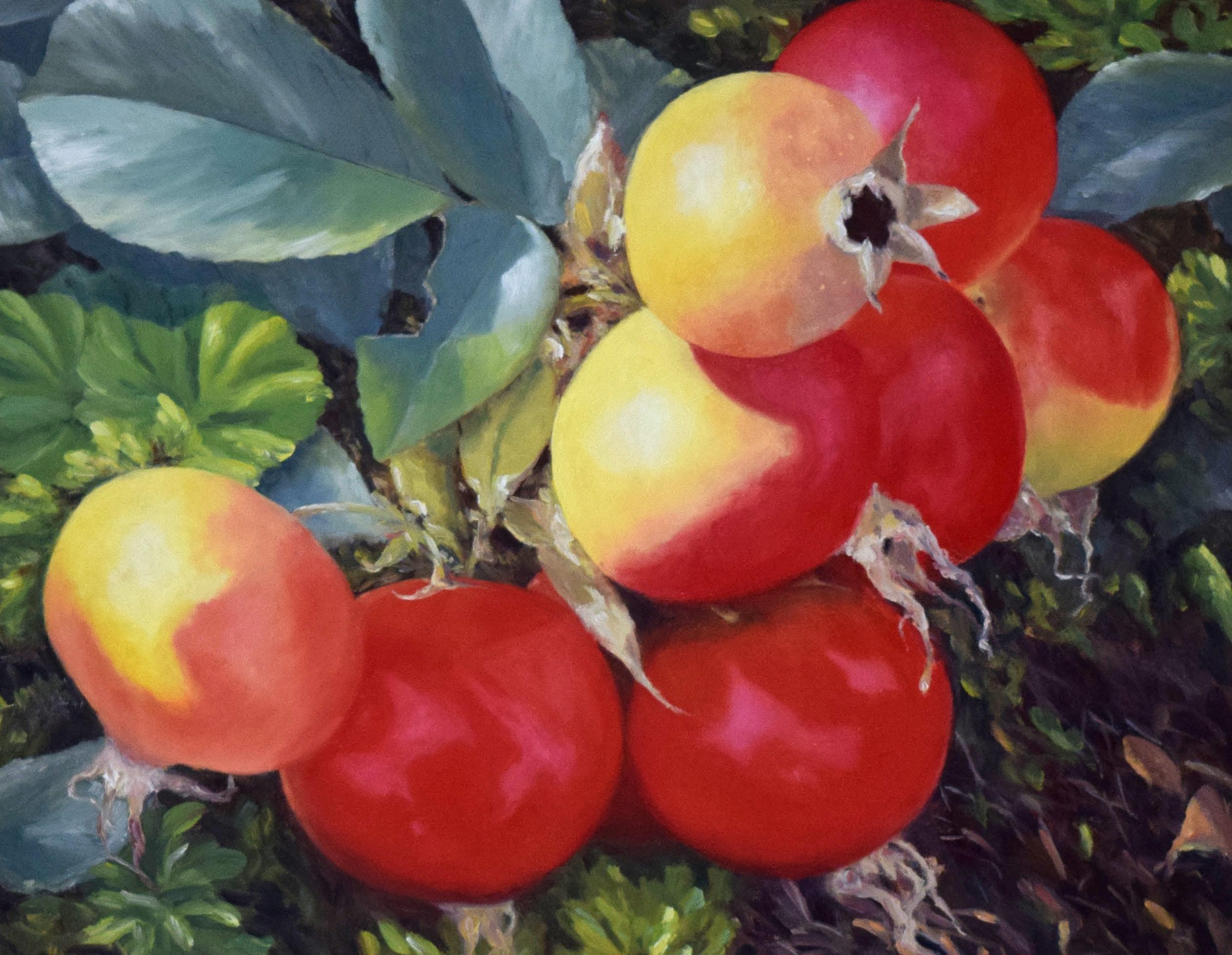 Beach Plums -oil