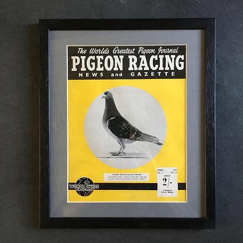NOW SOLD - Vintage racing pigeon print - 'The Quiet Man'