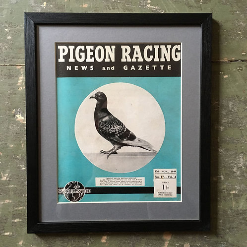 NOW SOLD - Vintage racing pigeon print - No. 52 'Faithful'