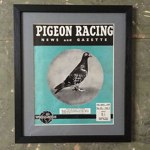 NOW SOLD - Vintage racing pigeon print - No. 48 'The Ugly Duckling'