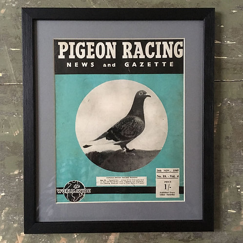 NOW SOLD - Vintage racing pigeon print - No. 53 'Eastern Star'
