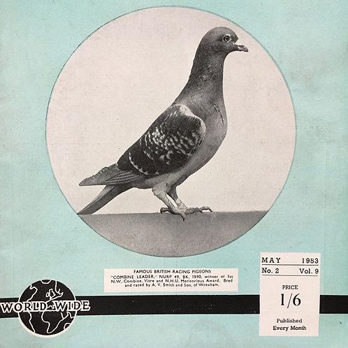 NOW SOLD - Vintage racing pigeon print - No.2 'Combine Leader'