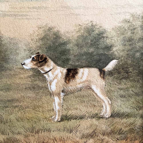 SOLD - Edwardian Fox Terrier dog painting