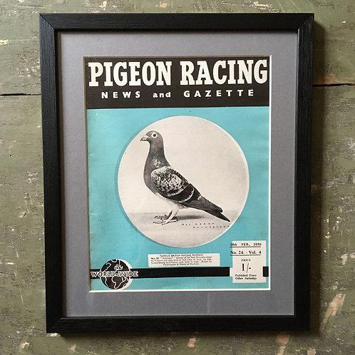 NOW SOLD - Vintage racing pigeon print - No. 59 'Homegirl'