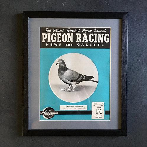 NOW SOLD - Vintage racing pigeon print - 'Blue Star'