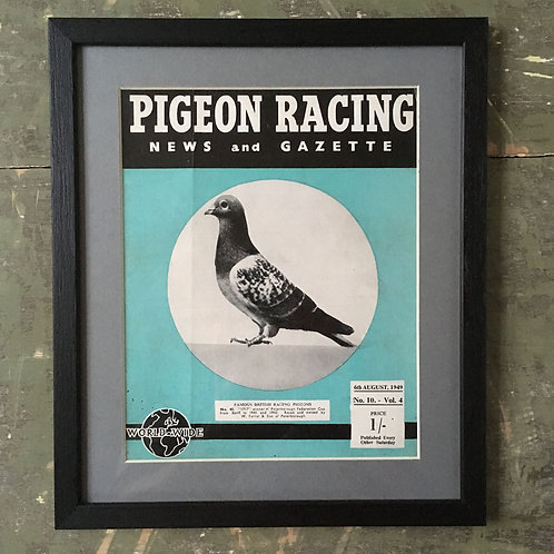 NOW SOLD - Vintage racing pigeon print - No. 45 '1717'