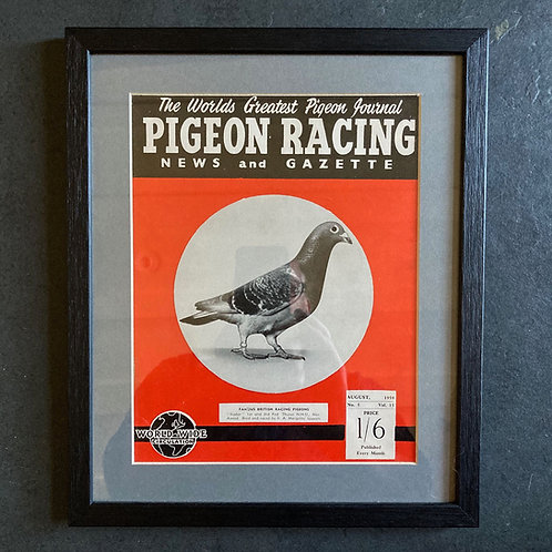 Vintage racing pigeon print - 'Radar' No.5